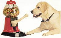Puppy & Dog Treat Machine